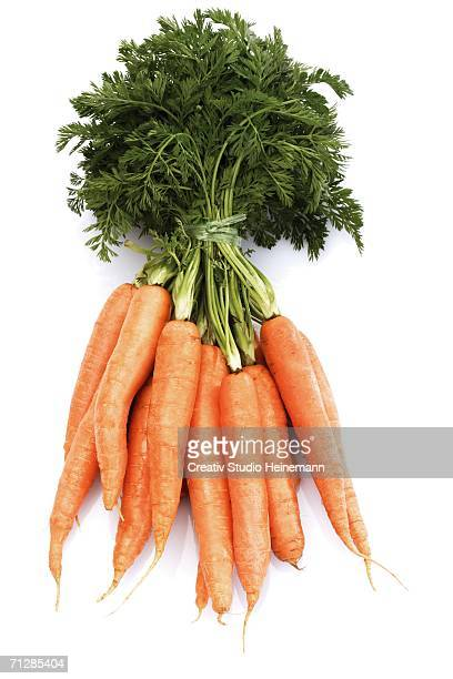 Fresh carrots, close-up