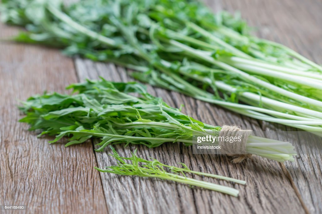 Bunch of fresh Mizuna leaves on wood background. : Stock Photo