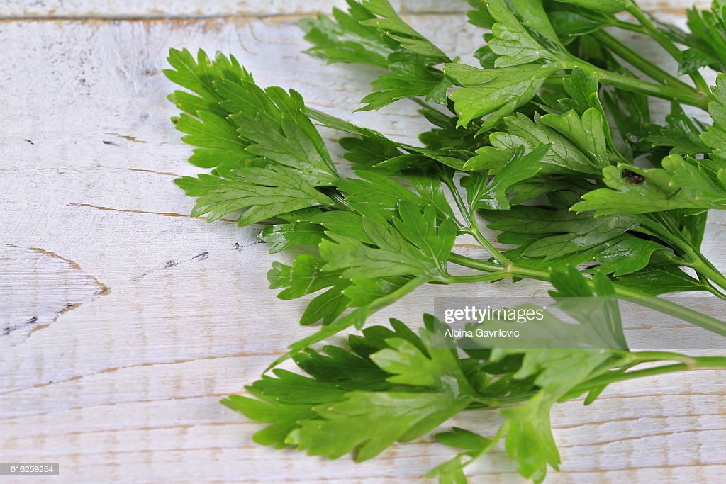 Bunch of Fresh Parsley on White Background. Healthy eating concept : Stock Photo