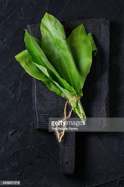 bunch of fresh ramson - ail des ours photos et images de collection