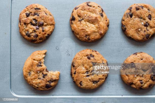 a bunch of freshly baked chocolate chip cookies on a baking sheet - cookie stock pictures, royalty-free photos & images