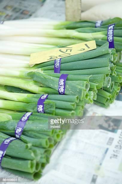 bunch of green onions in market - ネギ ストックフォトと画像