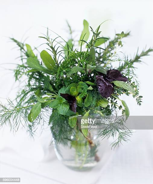 Bunch of herbs in a vase