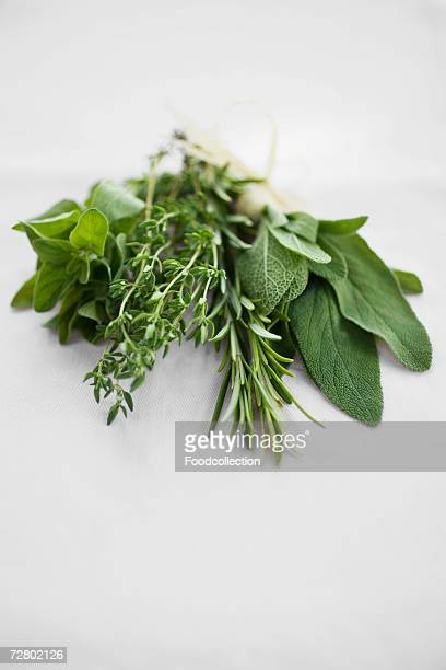 Bunch of herbs: rosemary, sage, thyme and oregano
