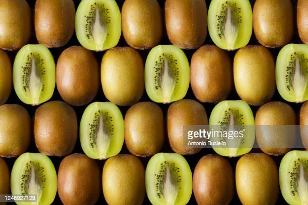 bunch of kiwifruit - kiwi fruit stock pictures, royalty-free photos & images