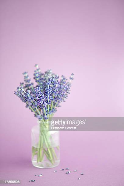 Bunch of lavender blossoms in little glas vase
