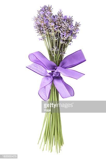 Bündel von Lavendel auf weißem Hintergrund