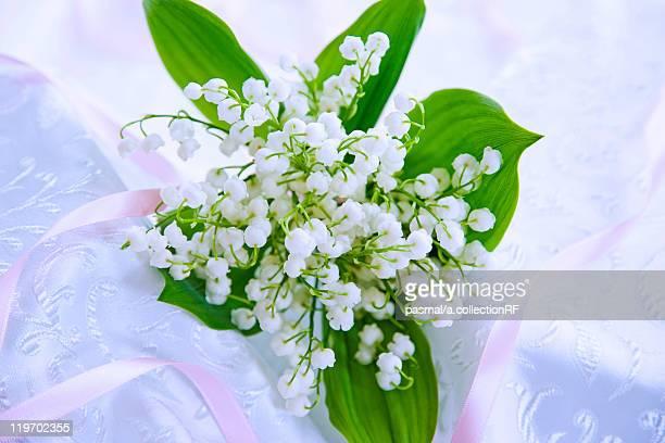 bunch of lily-of-the-valleys - bouquet de muguet fotografías e imágenes de stock