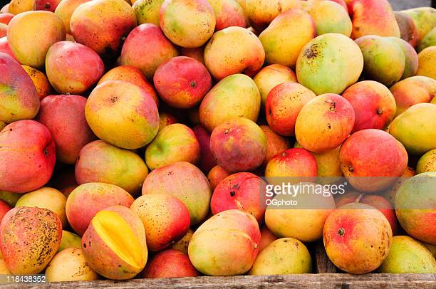 bunch of mangoes at a fruit stand - ogphoto stock photos and pictures
