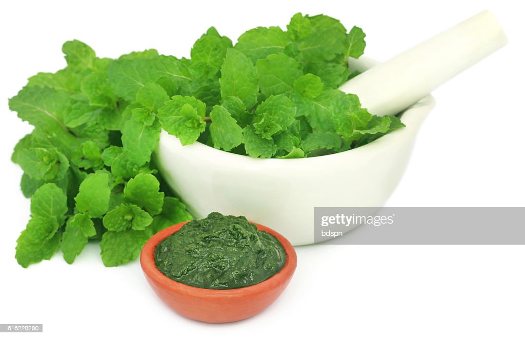 Bunch of mint leaves in a mortar with ground paste : Stock-Foto