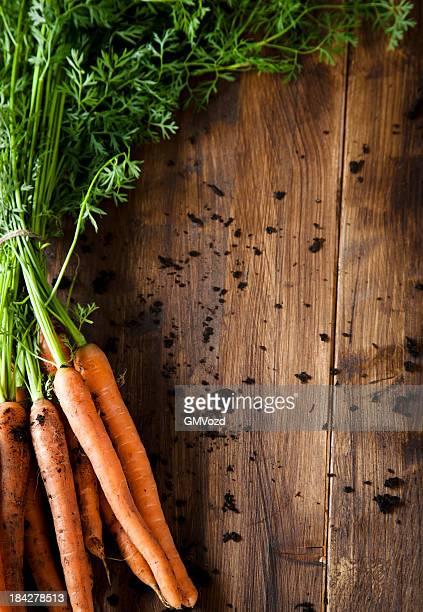 Tas de carottes bio