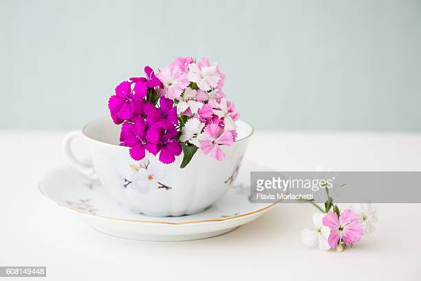 Bunch of pink flowers inside a teacup