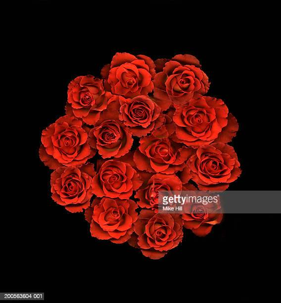 Bunch of red roses against black background, close-up, overhead view