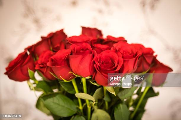 bunch of roses - red rose stock pictures, royalty-free photos & images