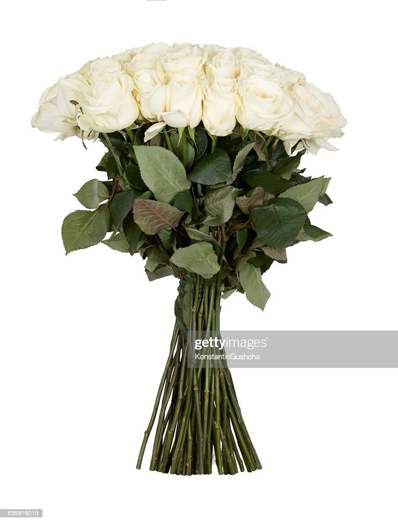 Bunch of roses : Stock Photo