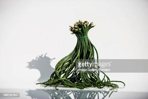 Bunch of serpentine beans
