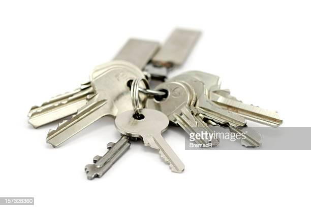 a bunch of silver keys on keychain - large group of objects stock pictures, royalty-free photos & images