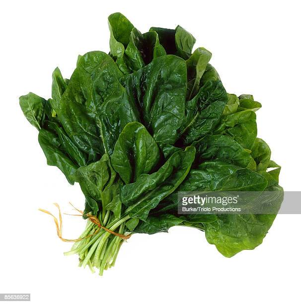 bunch of spinach - spinach stock photos and pictures