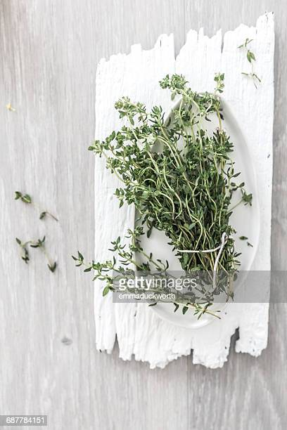 Bunch of thyme on a ceramic plate