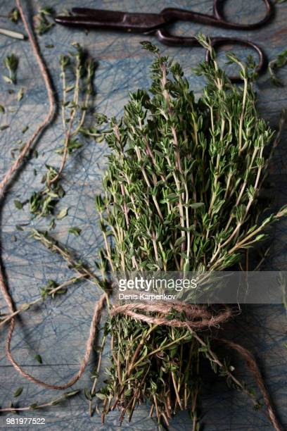 A bunch of thyme tied with twine.