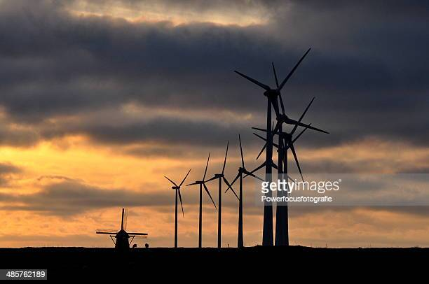A bunch of windmills