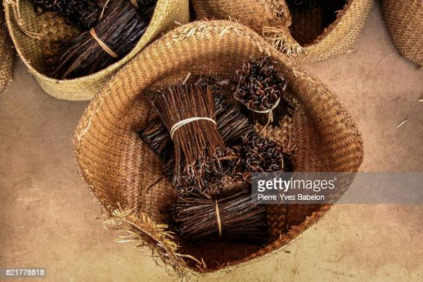 bunches of bourbon vanilla - pierre yves babelon madagascar stock pictures, royalty-free photos & images