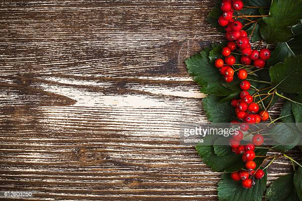bunches of hawthorn on  wooden table with  free space for  autumn theme, top view - may flowers stock pictures, royalty-free photos & images