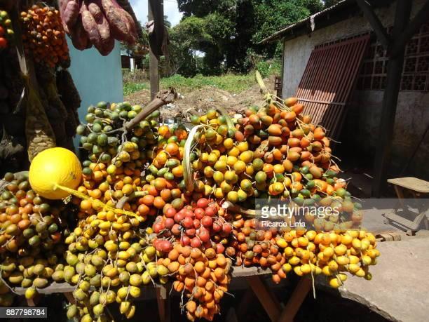 Bunches Of Pupunha Fruit