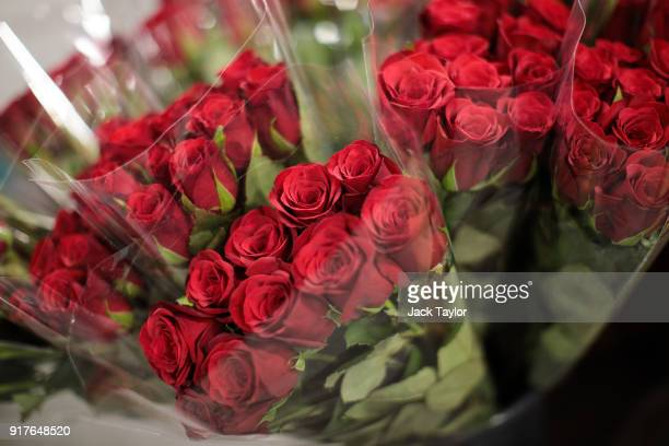 Bunches of roses on display at New Covent Garden Flower Market ahead of Valentine's Day on February 13 2018 in London England New Covent Garden...