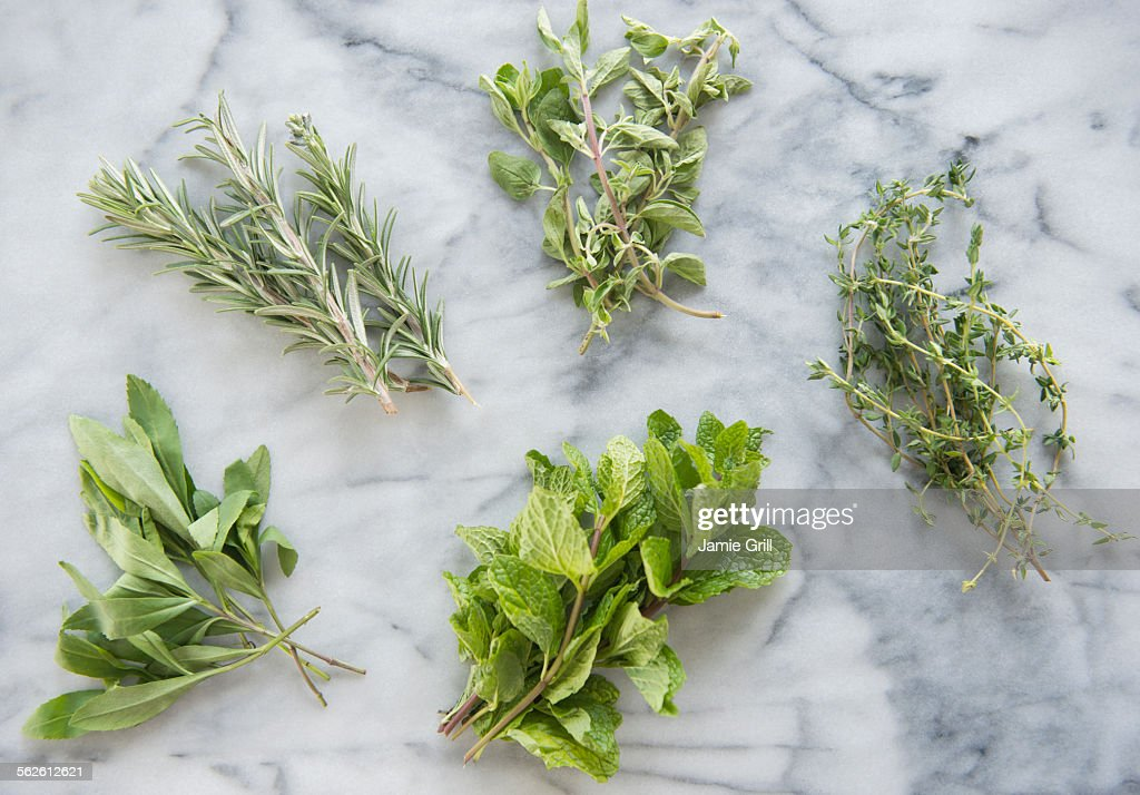 Bunches of various herbs on marble background : Stock Photo