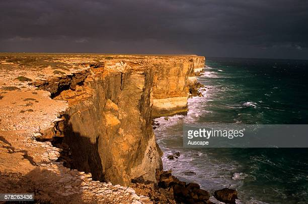 Bunda Cliffs and the Southern Ocean The cliffs stretch for around 100 km along the Great Australian Bight 60 to 120 m tall and sheer Nullarbor...