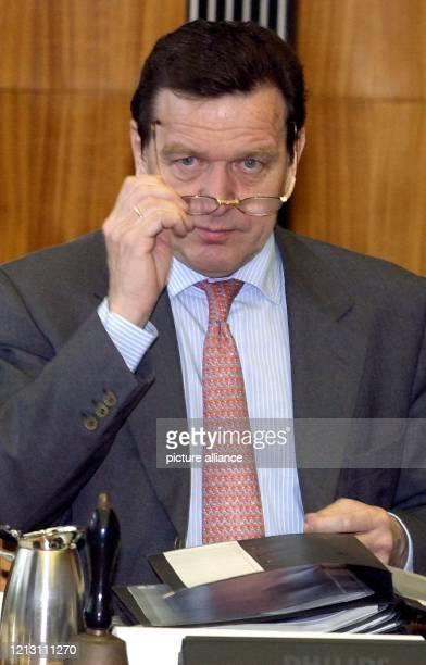 Bundeskanzler Gerhard Schröder setzt am 1532000 im Berliner Kanzleramt vor Beginn der Kabinettssitzung seine Brille auf Themen der Ministerunde waren...