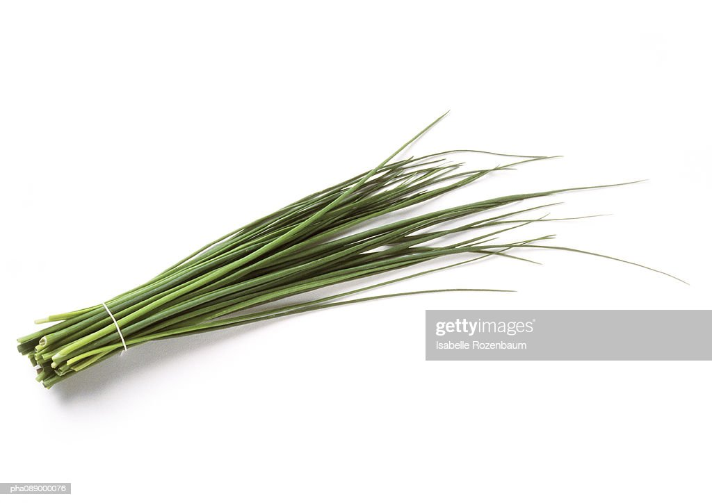 Bundle of chives, full length : Stock Photo