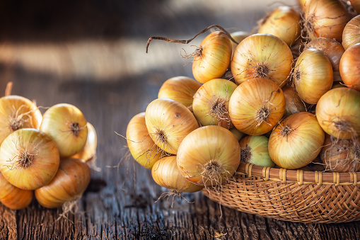 bundle of freely lying dried onion on a wooden table 1171700921