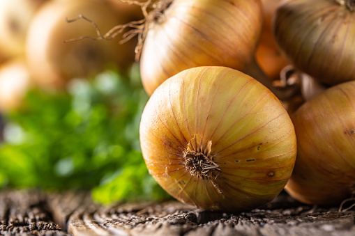 bundle of freely lying dried onion on a wooden table 1171700945