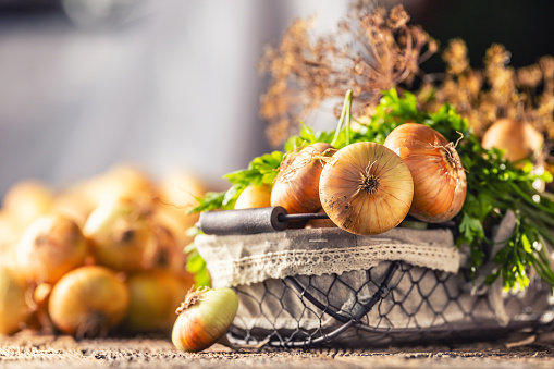 Bundle of freely lying dried onion with parsley herbs and dill in basket on a wooden table 1171700985