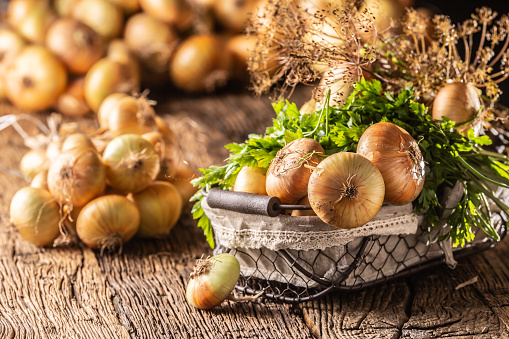 Bundle of freely lying dried onion with parsley herbs and dill in basket on a wooden table 1171701001