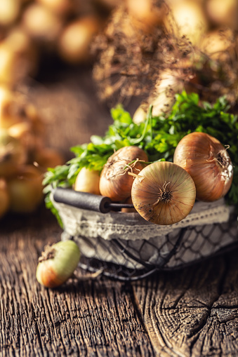 Bundle of freely lying dried onion with parsley herbs and dill in basket on a wooden table 1171701045