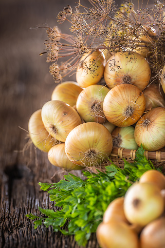 Bundle of freely lying dried onion with parsley herbs and dill on a wooden table 1171700976