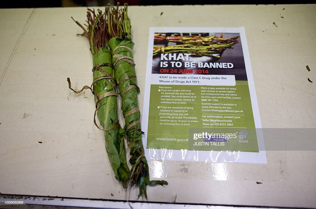 A bundle of khat sits on a counter next to a leaflet giving