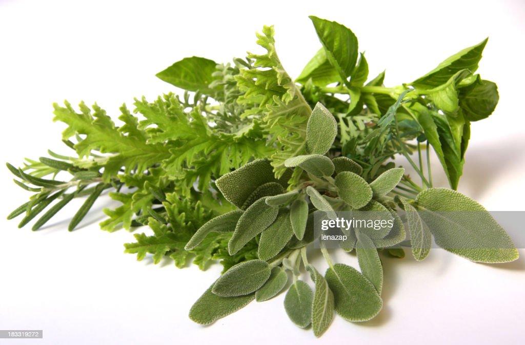 香り豊かなハーブ : ストックフォト
