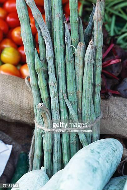bundle of moringa vegetables - moringa tree stock photos and pictures