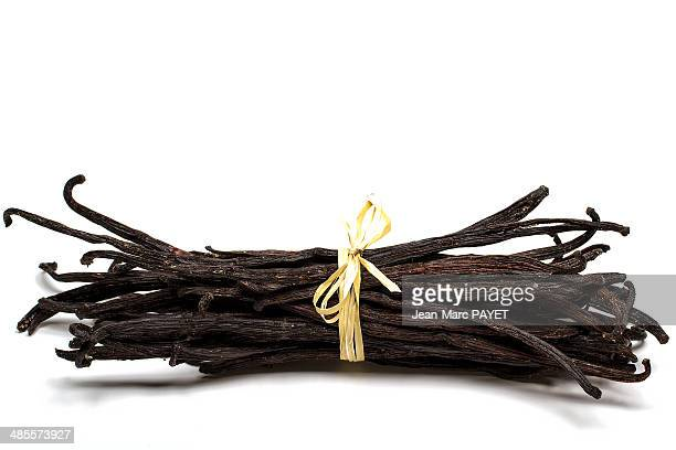 bundle of sticks of stalks of vanilla - jean marc payet photos et images de collection