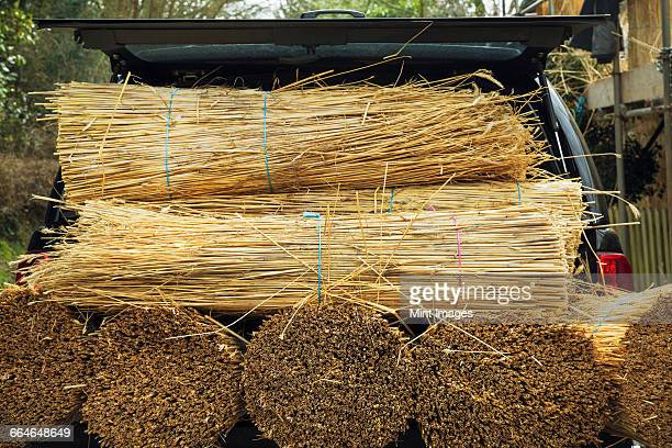 Bundles of straw for thatching on the back of a small truck.
