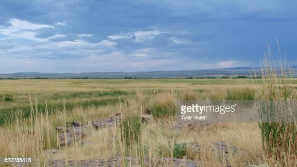 bundy malheur national wildlife refuge scenery - location of famous standoff oregon - steens mountain stock pictures, royalty-free photos & images