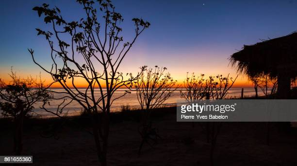 bungalow at sunset - pierre yves babelon stock pictures, royalty-free photos & images