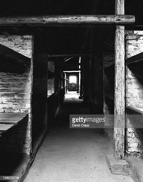 bunk beds in birkenau concentration camp where as many as 9 prisoners slept in one bed, auschwitz, poland - birkenau stock pictures, royalty-free photos & images
