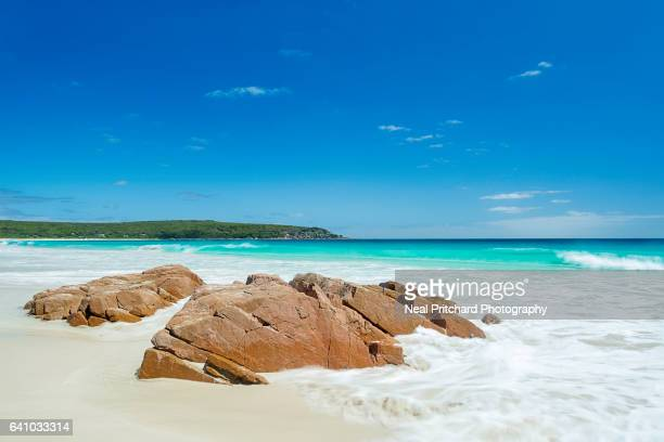 bunker bay - western australia stock pictures, royalty-free photos & images