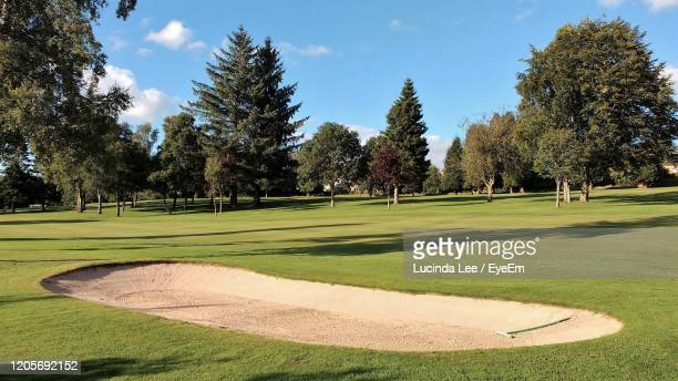 bunker on golf course - lucinda lee stock pictures, royalty-free photos & images