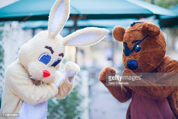bunny and bear having a fight - funny boxing stock photos and pictures